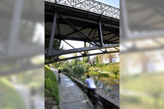 Radschnellwege: Freiburg will Vorfahrt für Radfahrer