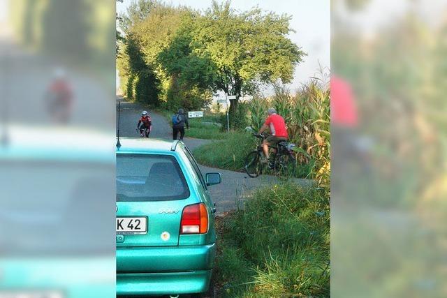 Schwerer Unfall zwischen Maisfeldern