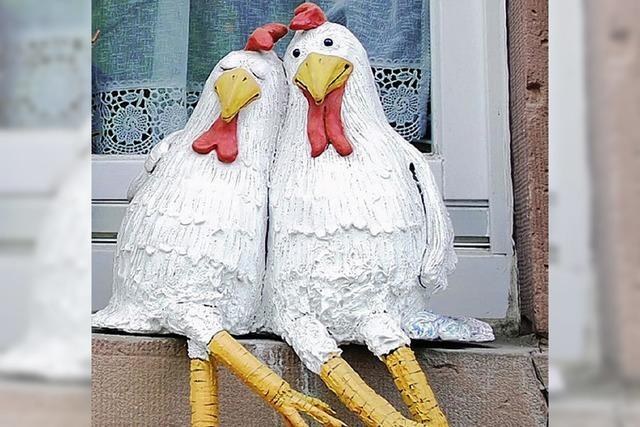 Hühnerhaus ist erlaubt
