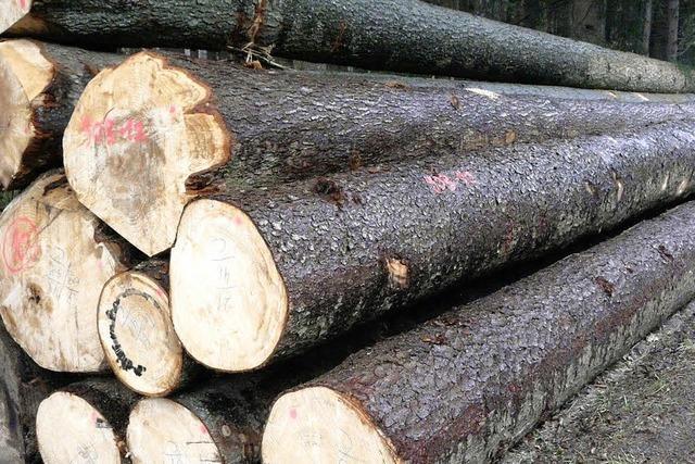 Der Brennholzpreis puscht den Buchenmarkt