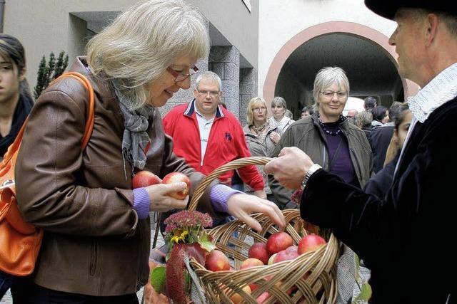 Markt, Volksfest und Ausstellung