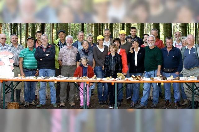 Viertägiges Pilzseminar endete mit einem Tag fetter Beute
