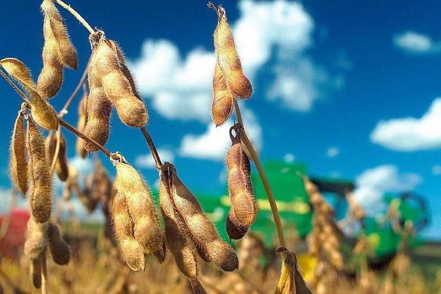EU will Bauern zum Umweltschutz bewegen
