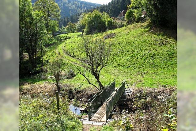 Brücke erschließt Rundweg