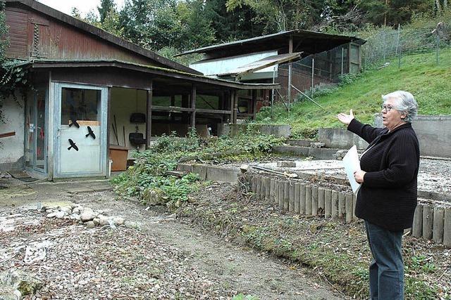 Sanierung des Tierheims beginnt