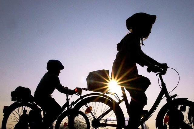 Sollen Helme für Radler zur Pflicht werden?