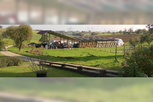 Viehstall sorgt weiter für Streit