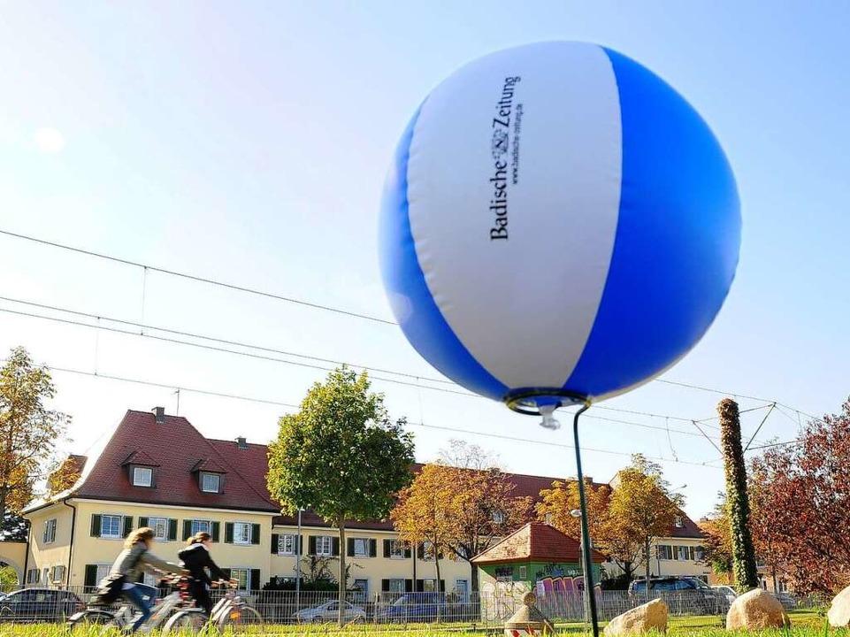 Die Gutleutmatten an der Carl-Kistner-...ball auf einer Doldenstütze platziert.  | Foto: Thomas Kunz