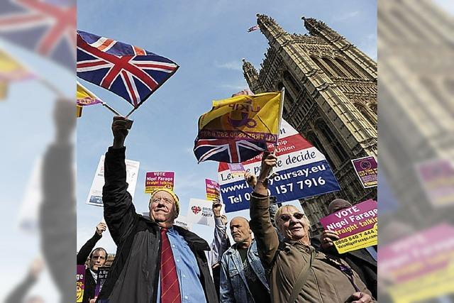 Britische Europa-Gegner setzen Premier unter Druck