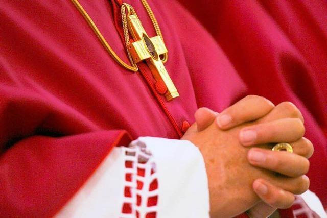 Umweltschützer kritisieren CO<sub>2</sub>-Bilanz der Bischöfe