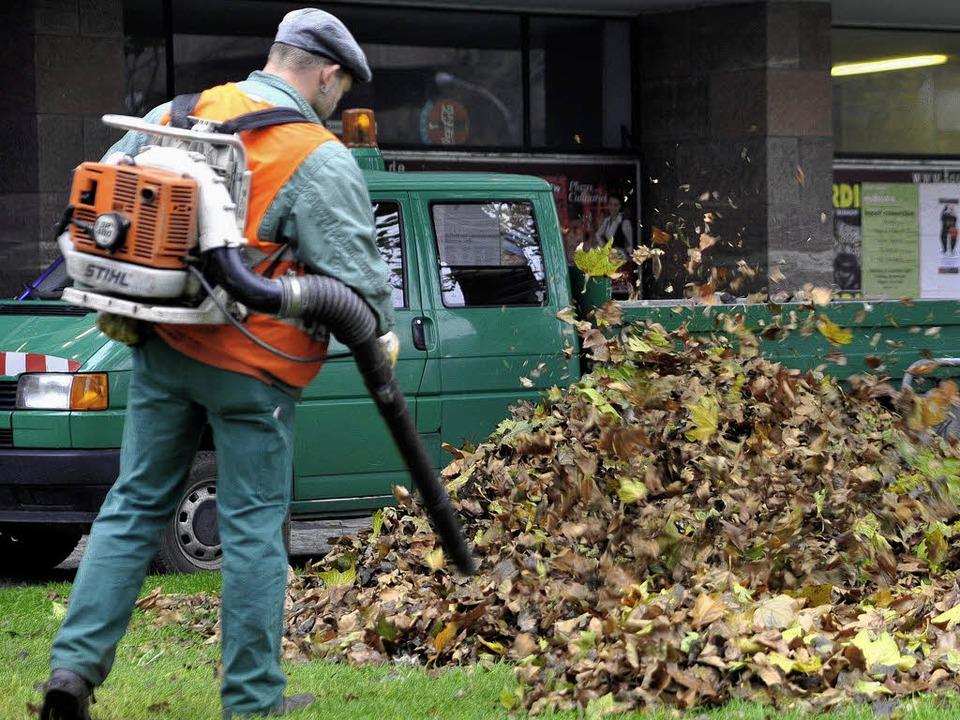 Herbstproblem: Lärm oder Laub?  | Foto: Thomas Kunz