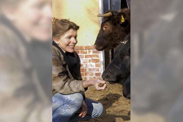 Vortrag zur Ehrenrettung der Kuh