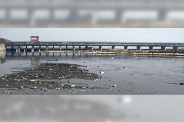 Kunstprojekt will auf verschmutzten Fluss aufmerksam machen