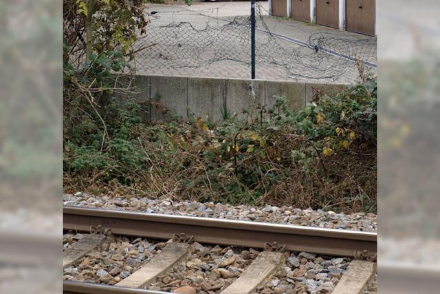 Zaun am Gleis zerstört - lebensgefährlicher Bahnübergang
