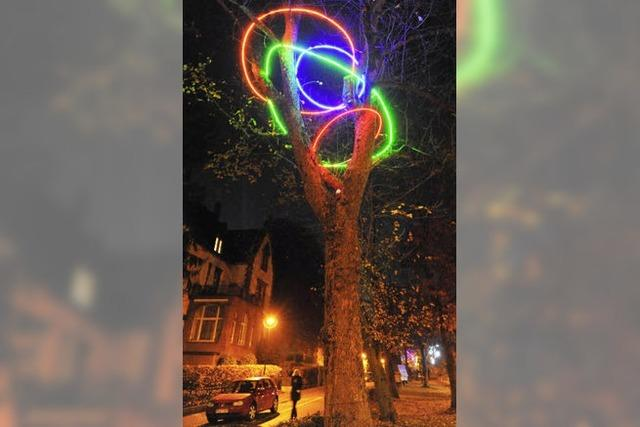 Bäume mit Leuchtkraft