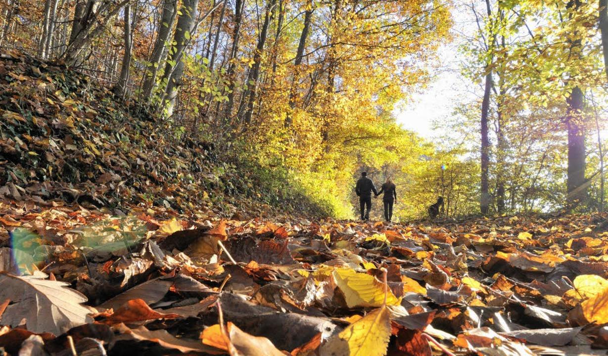 Herbst: Die milden Temperaturen, welch...– sorgen für besondere Stimmung.    Foto: Siegfried Gollrad