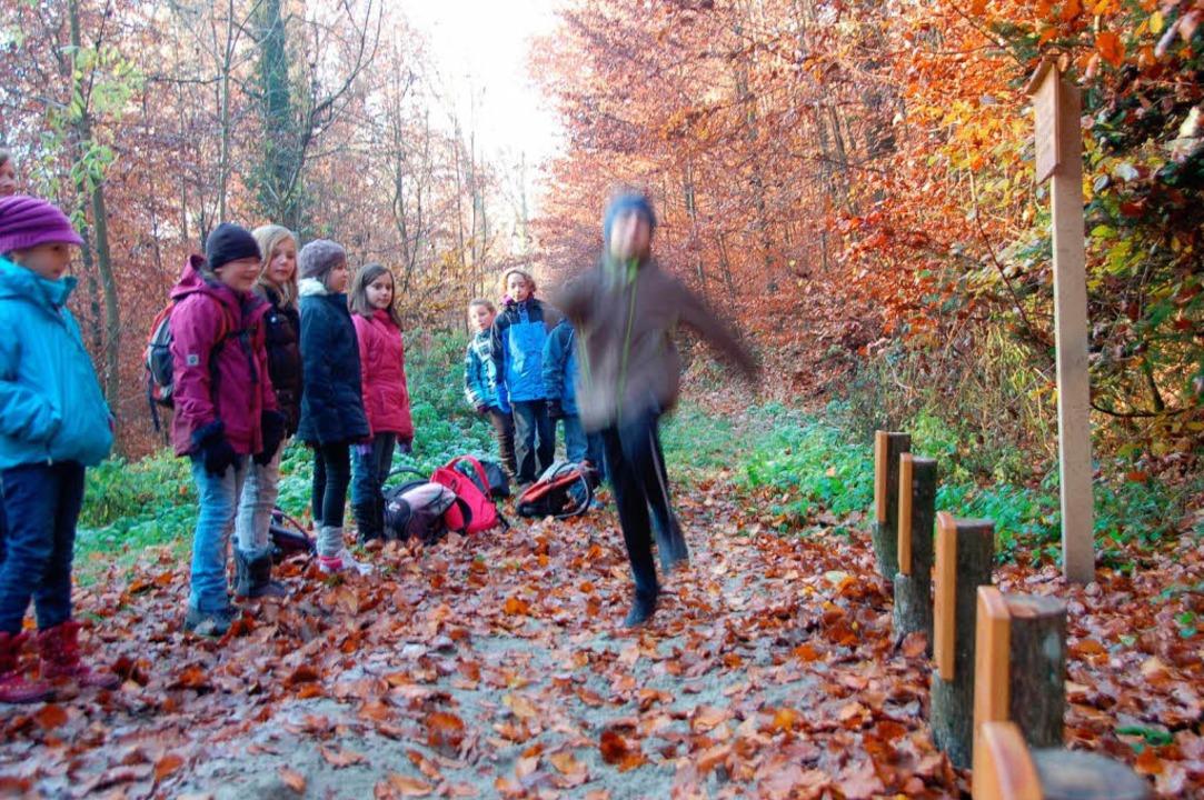 Wie weit springt ein Rehbock? Der Tierweitsprung klärt auf.  | Foto: Gerhard Walser