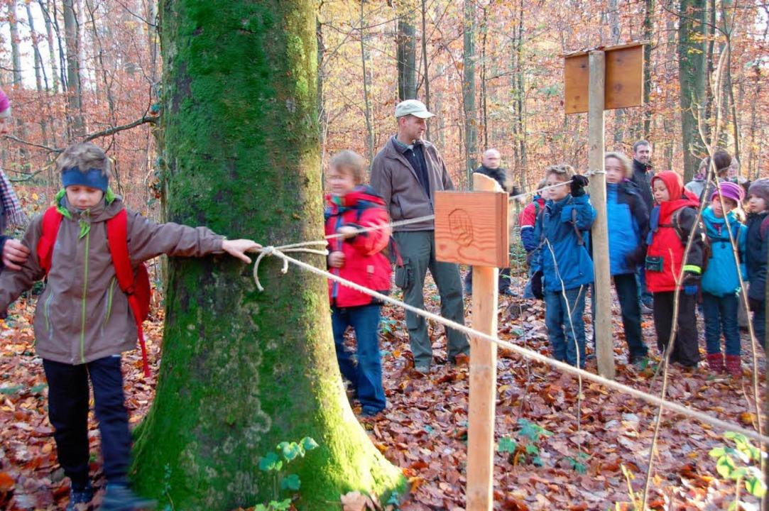 Der Blindpfad: Am Seil entlang kann man Baumrinden ertasten.  | Foto: Gerhard Walser