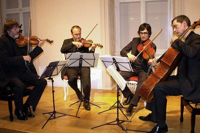 Vor Leben und Intensität strotzendes Haydnquartett