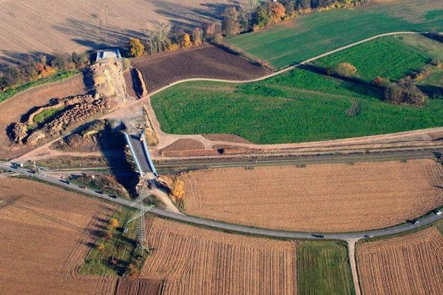 Planungsstopp B31 West: Bürgermeister greifen Hermann an