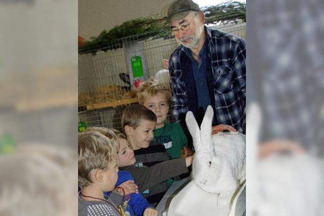 330 Kaninchen aus 60 Rassen