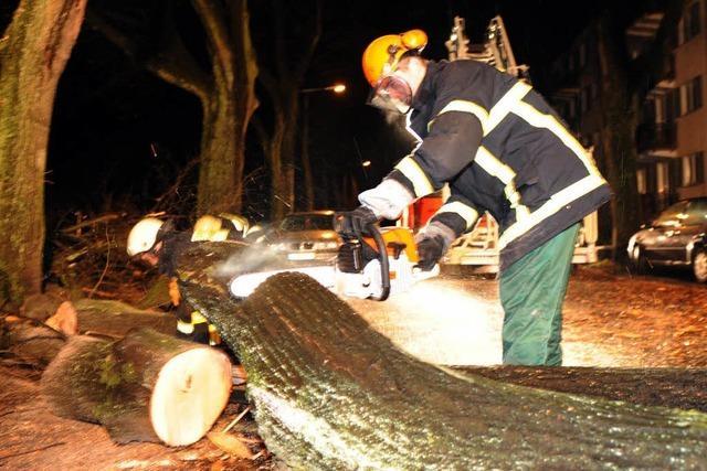Schäden durch Orkanböen in Südbaden