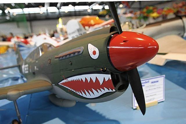 Modellflugzeuge starten in der Seebodenhalle