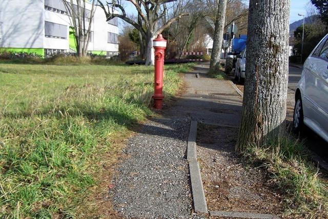 Breiter Gehweg – ohne Bäume ?