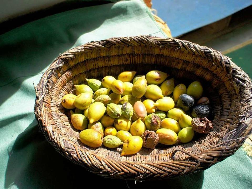 Aus marokkanischen Argannüssen wird ei...ungsfördernd und immunstärkend wirkt.   | Foto: Vita Classica