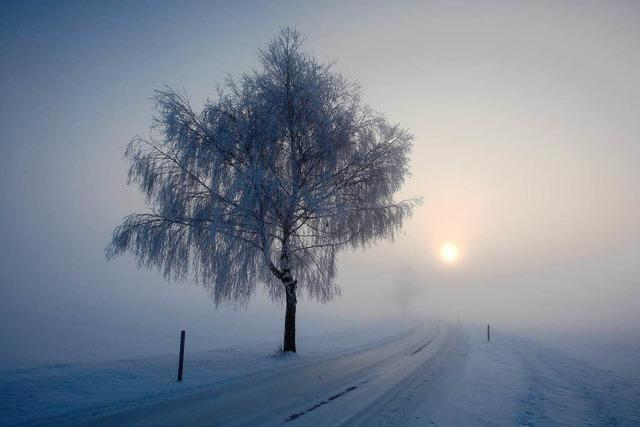 Zahlreiche Unfälle nach Wintereinbruch