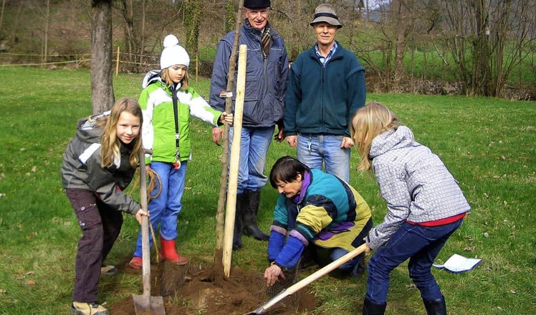 Auf der Streuobstwiese bei der Friedri...Gruppe Dreisamtal  weitere Apfelbäume.  | Foto: Privat