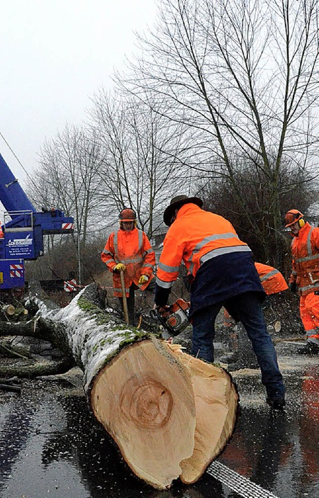 Die Beuggener Straße war gestern bis z...tag wegen der Baumfällaktion gesperrt.    Foto: Ingrid Böhm-Jacob