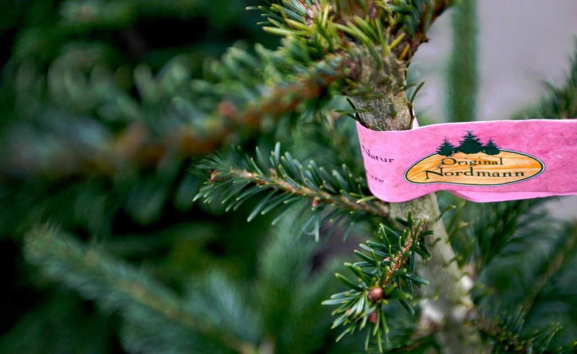 An Weihnachten ist niemand gerne allei...auch für Bedürftige gilt (Symbolbild).  | Foto: dapd