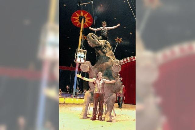 Zirkusluft mit Weihnachtsduft