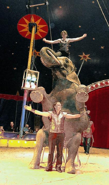 Einer der tierischen Stars des Circus Luna ist Elefant Benjamin.    Foto: Freudig