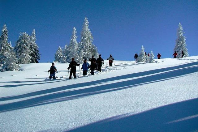 Schneeschuhwandern am Feldberg: Verschneite Stille, unberührte Natur