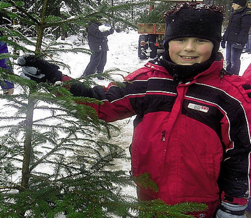 Ist der nicht schön? Marvin hat seinen Baum gefunden.   | Foto: Schule