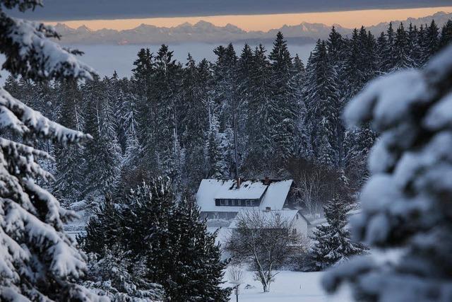 Der winterliche Blick