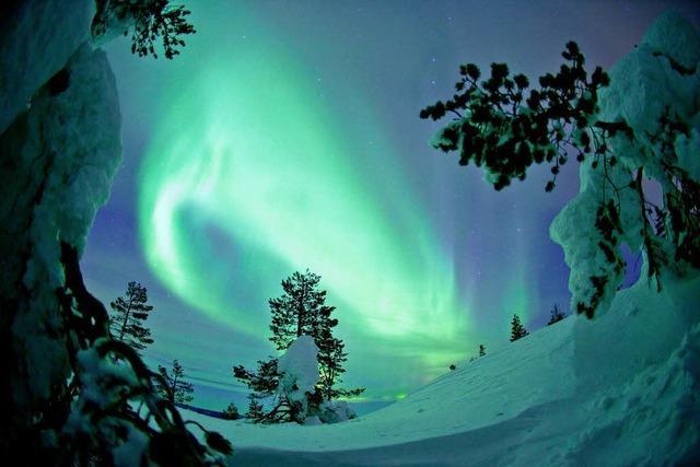 Lappland - Schärfe des Winters