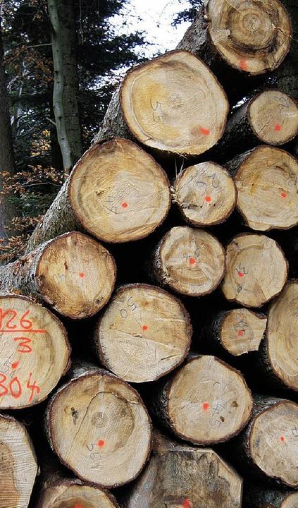 Bernauer Waldbesitzer, unter ihnen die...ngsbau des Traditionshotels  Schwanen.  | Foto: Matthias Hiekel / Kristin Fritz / Ulrike Spiegelhalter