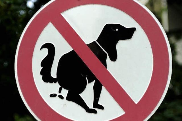 Zwölf Euro pro Hund mehr im Jahr
