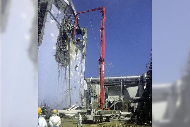 RHEINGEFLÜSTER: Gute Ideen aus Burkheim für Fukushima