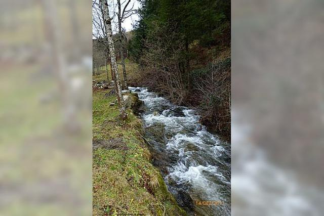 Wasserkraft des Aiterbaches birgt noch Möglichkeiten