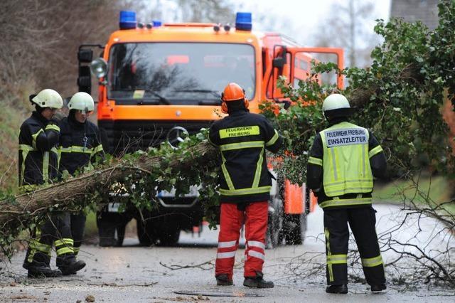 Sturm über Südbaden: Höllentalbahn betroffen