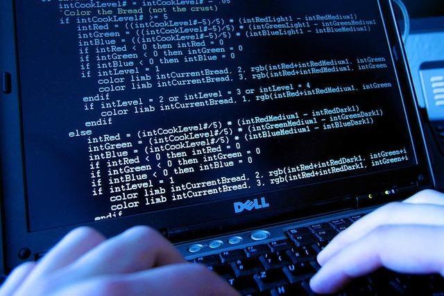 Alle Internetnutzer sollen Computer überprüfen