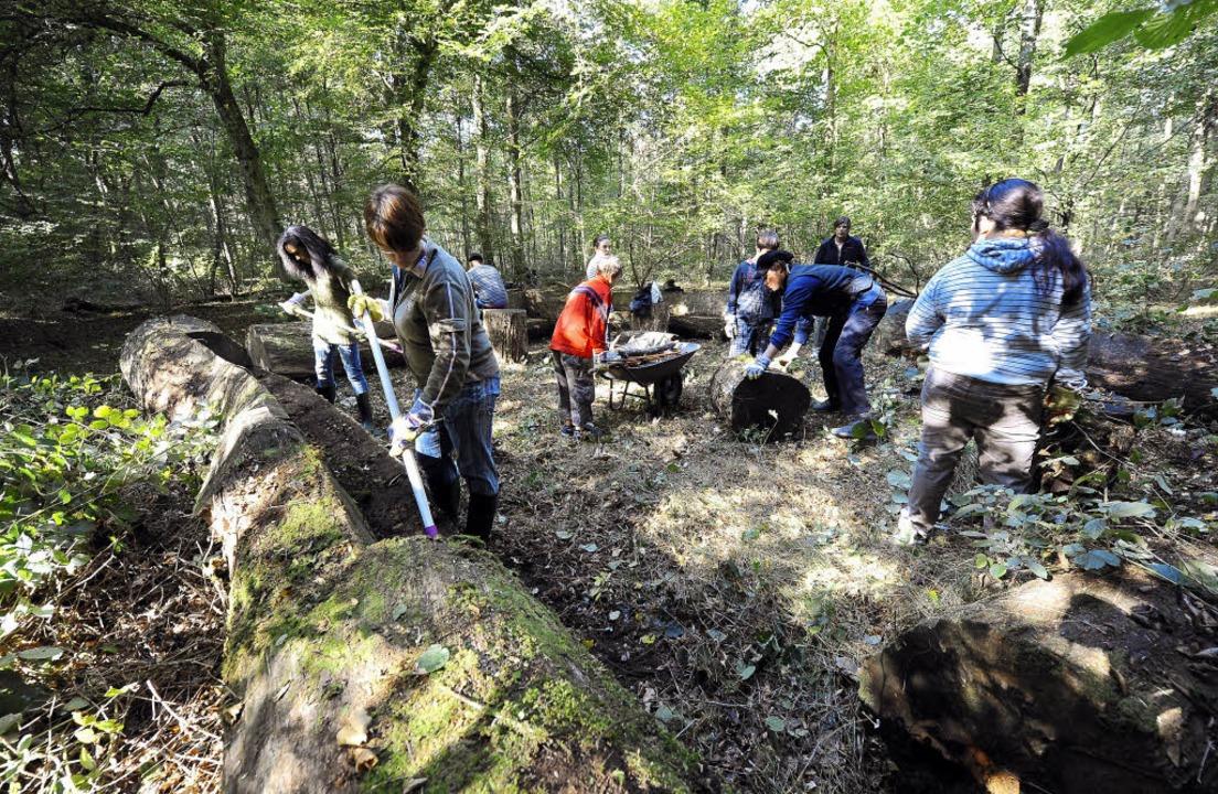 Stärkt das Selbstwertgefühl: Jugendliche packen im Wald kräftig an.   | Foto: SCHNEIDER/PRIVAT