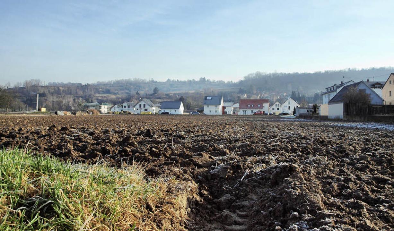 Blick von der Erweiterungsfläche auf Herrengüter I.    Foto: Michael Haberer