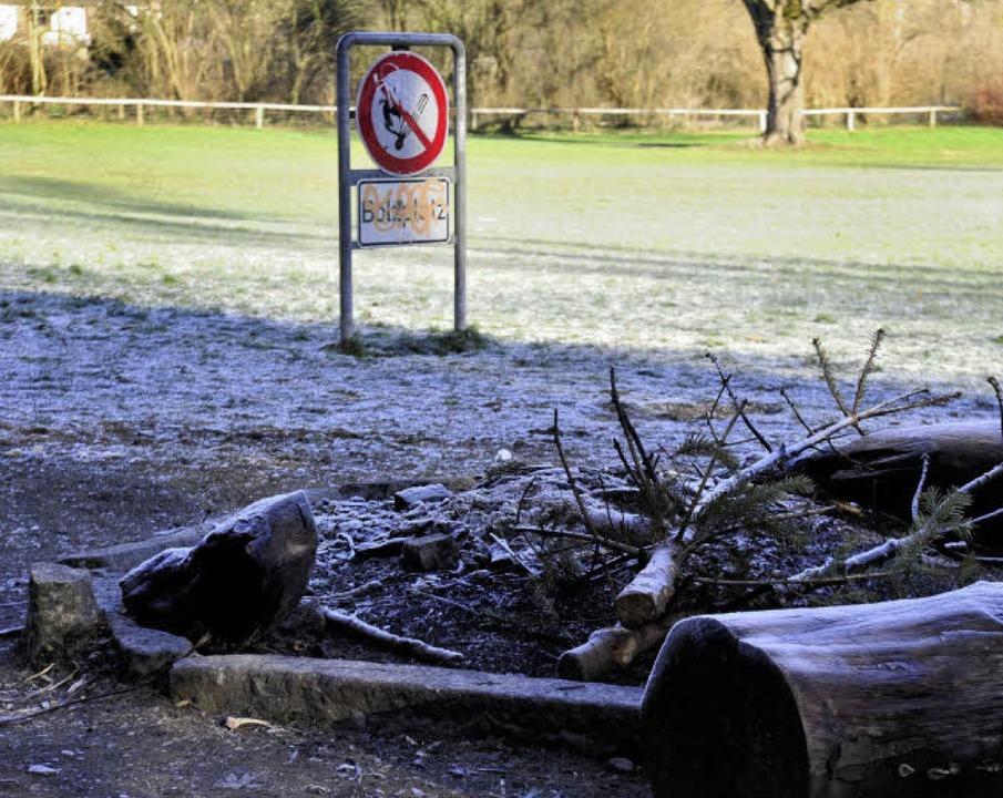 Sternwaldwiese: Nicht nur die mit Stei...ten Grillstellen werden gerne genutzt.  | Foto: Ingo Schneider