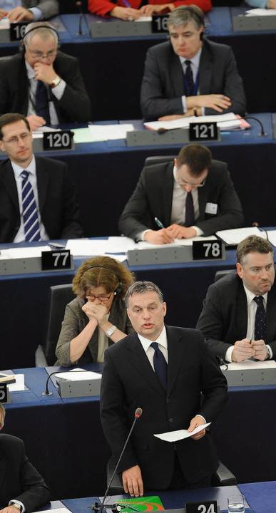"""""""Diese Probleme können schnell u...rne) vor dem Straßburger EU-Parlament.    Foto: dpa"""