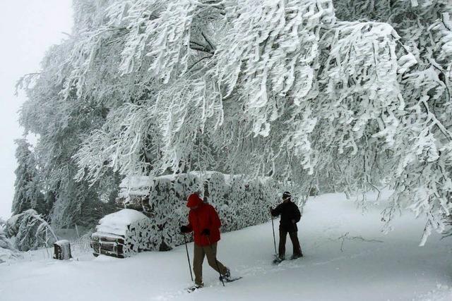 Wo liegen die Risiken beim Schneeschuhwandern?
